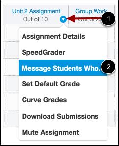 Screenshot of the Canvas grade item drop down menu